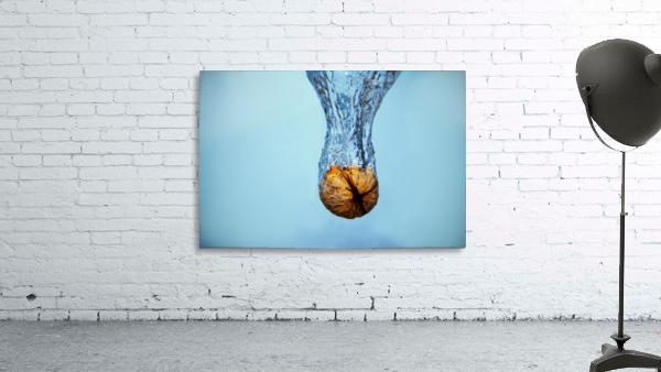 Amazing Walnut water splash
