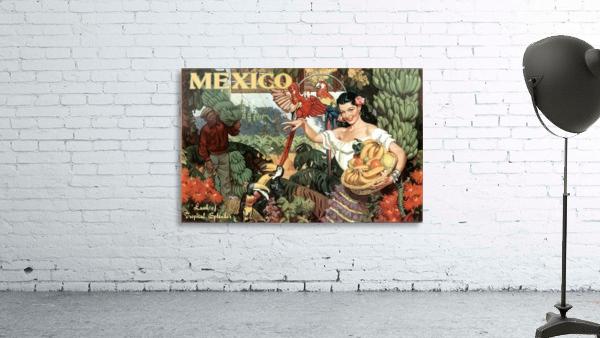 Mexico Land of Tropical Splendor