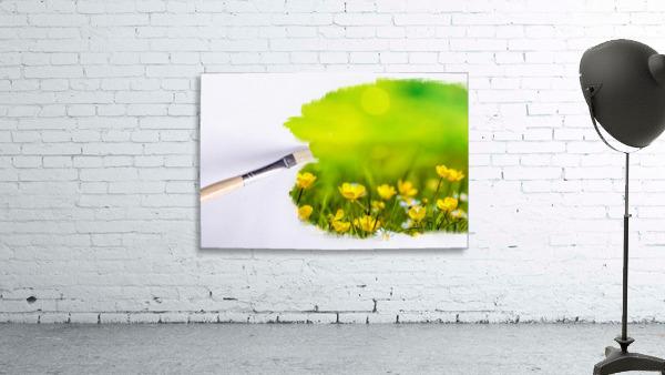 Paintbrush Outdoor Flower Flowers Sunlight