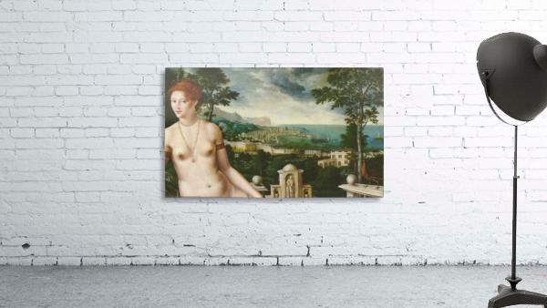 Venus Citerea