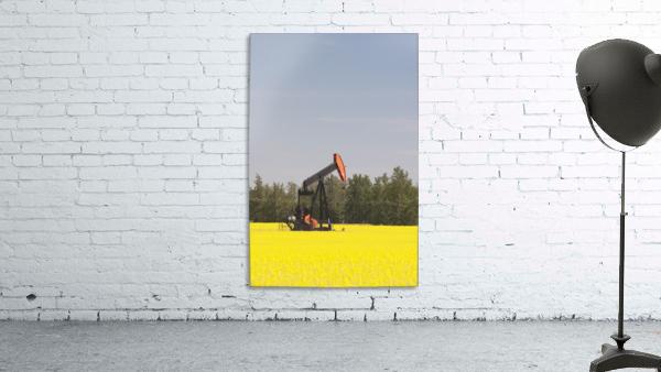 Alberta, Canada; Pump Jack In A Flowering Canola Field