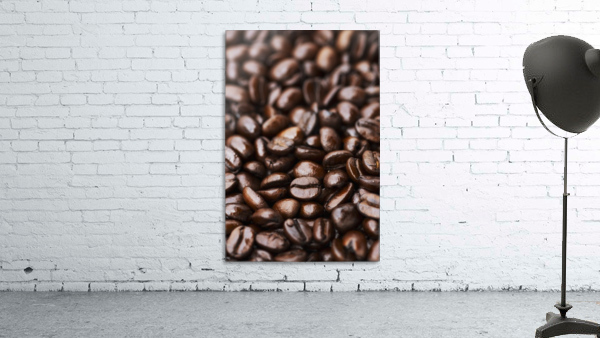 Medium dark roast Kona coffee beans close up; Holualoa, Big Island, Hawaii, United States of America