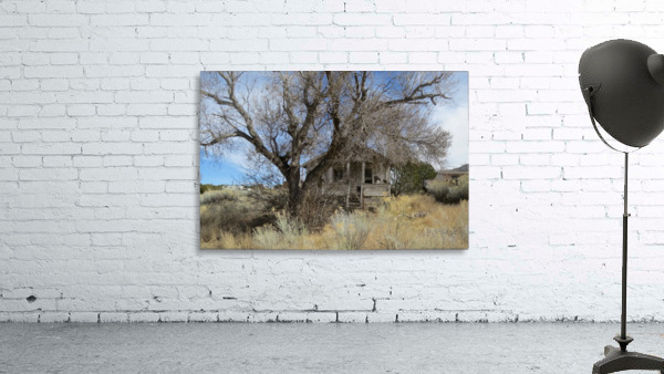 Turquoise Trail - This Old House 1VP