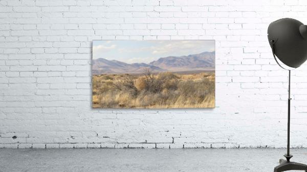 Landscape around Fort Craig VP1
