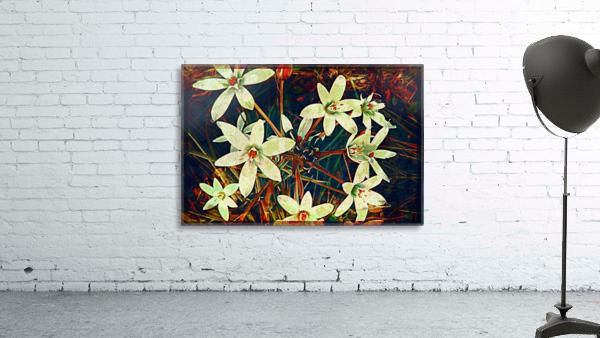 WhiteDarkWallflowers Print