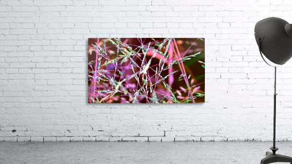 weeds Print