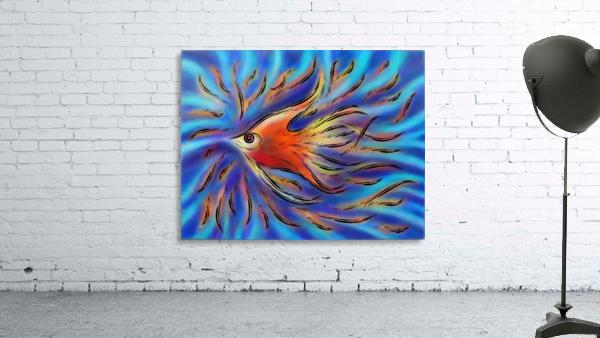Poloniussa - red angelfish