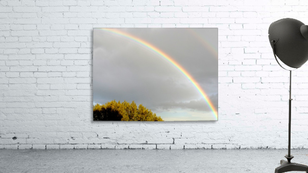 Landscape, photography - Double rainbow on Roman sky with tree - The Roman landscape, Rome, Italy, photography