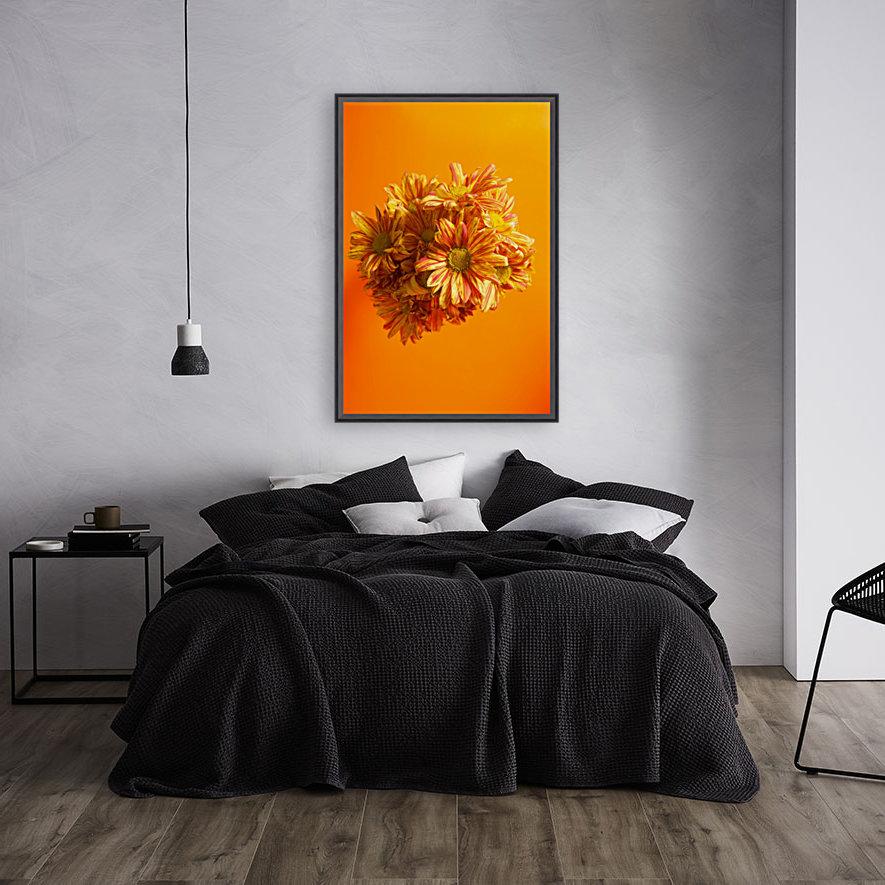 Orange scent  Art