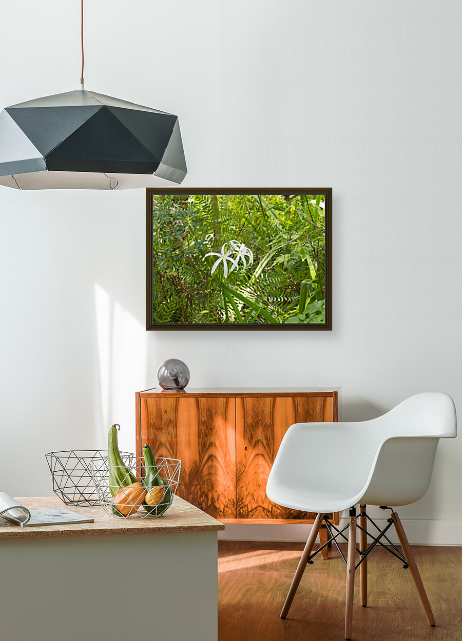 HDR Crinum lilies with Floating Frame