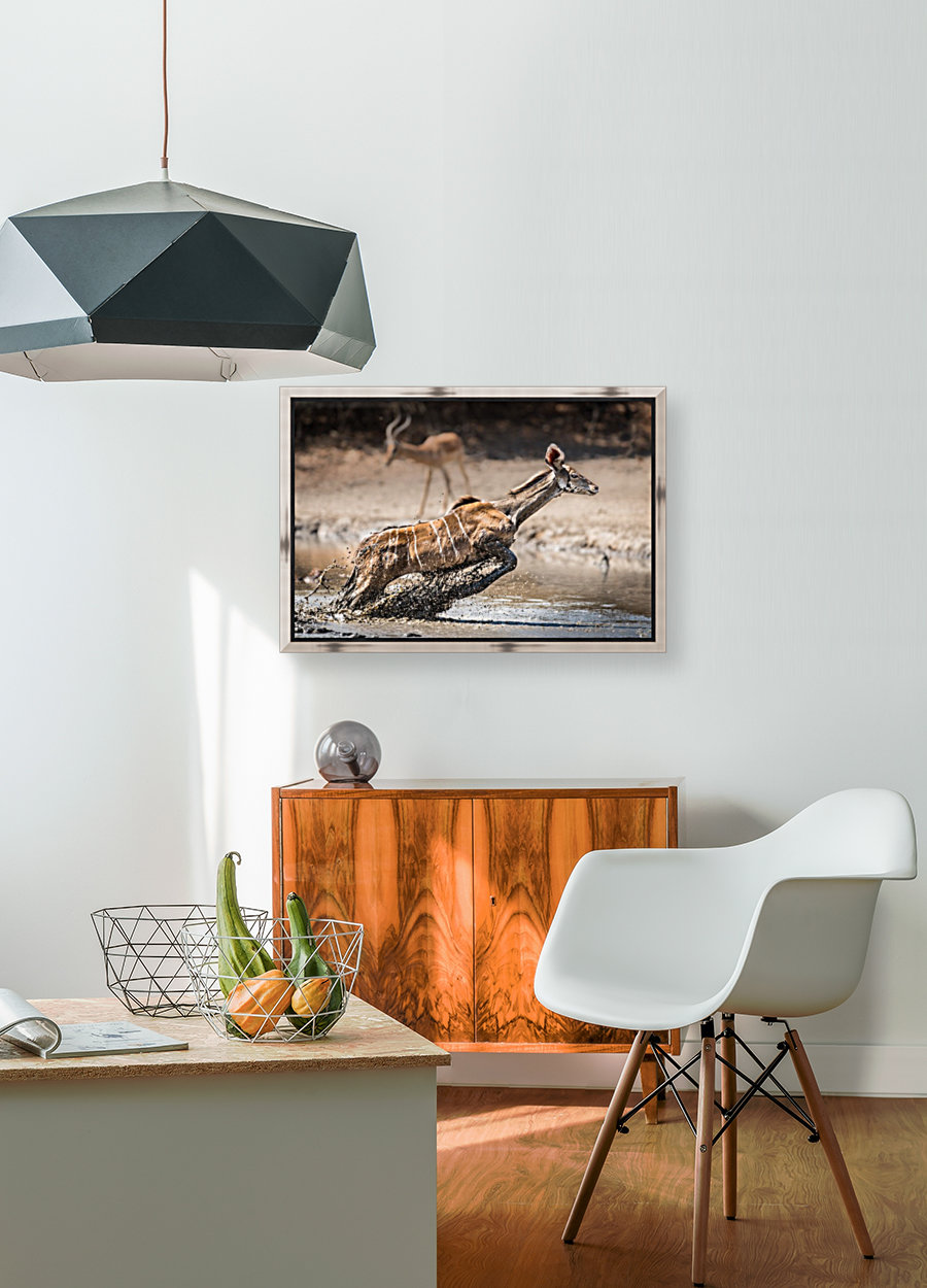 Kudu jump with Floating Frame