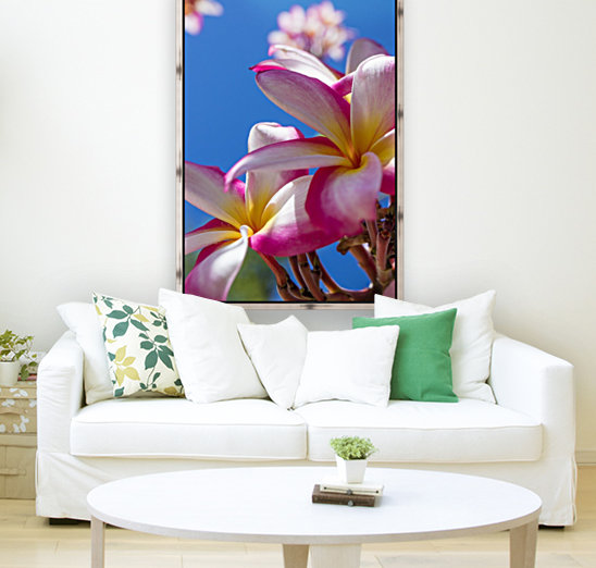 Close-up of pink plumeria flowers and blue sky; Lanai, Hawaii, United States of America  Art