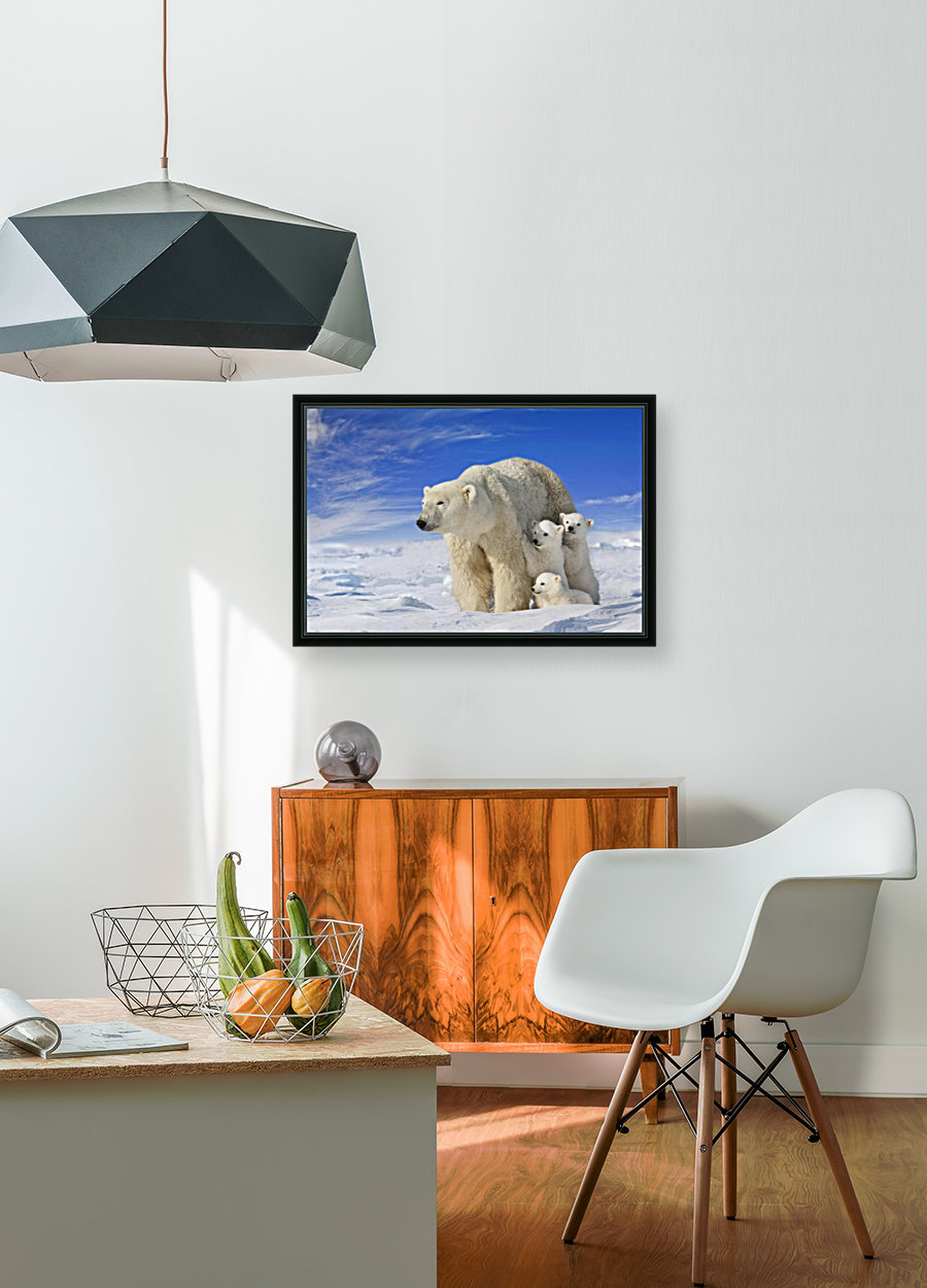 View Of Polar Bear Sow (Ursus Maritimus) With Her Triplet Cubs On The Wind Swept Plains Of Wapusk National Park, Manitoba, Canada, Winter, Composite  Art