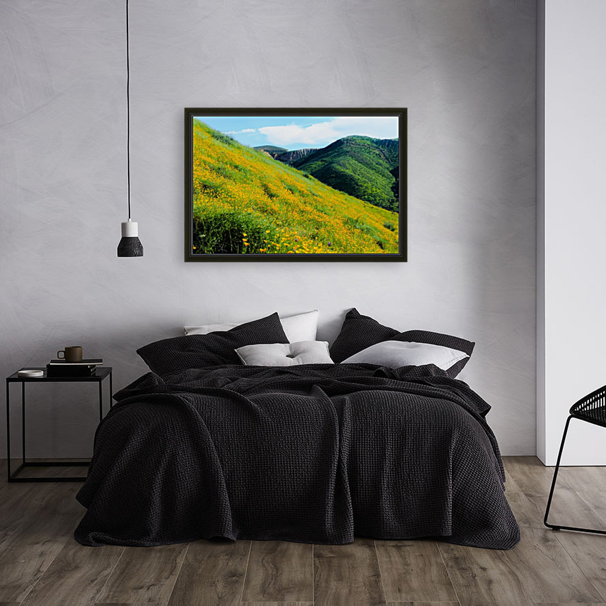yellow poppy flower field with green leaf and green mountain and cloudy blue sky in summer  Art