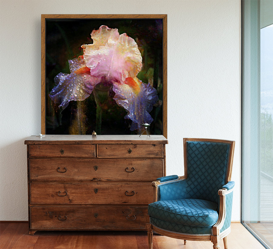 Enchanted Iris    Art