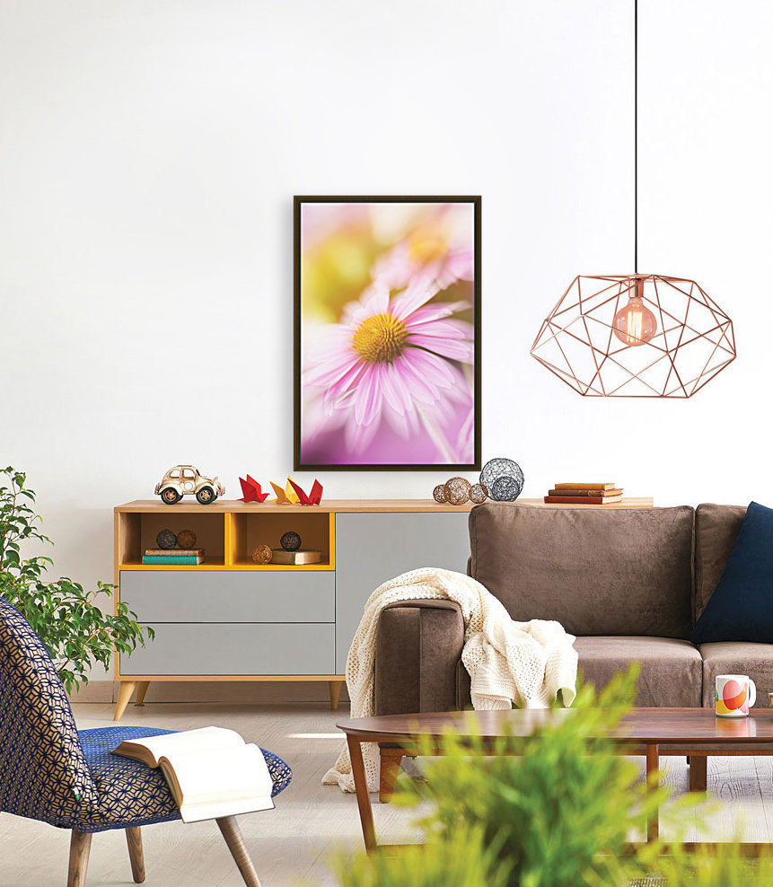 Dreamy Pink Coneflower  with Floating Frame