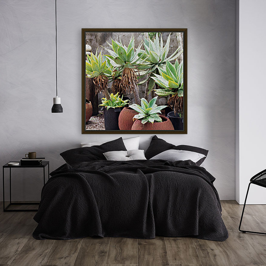 Potted Agave Plant with Floating Frame
