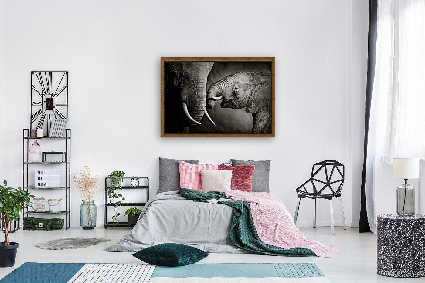Elephant affection  Art