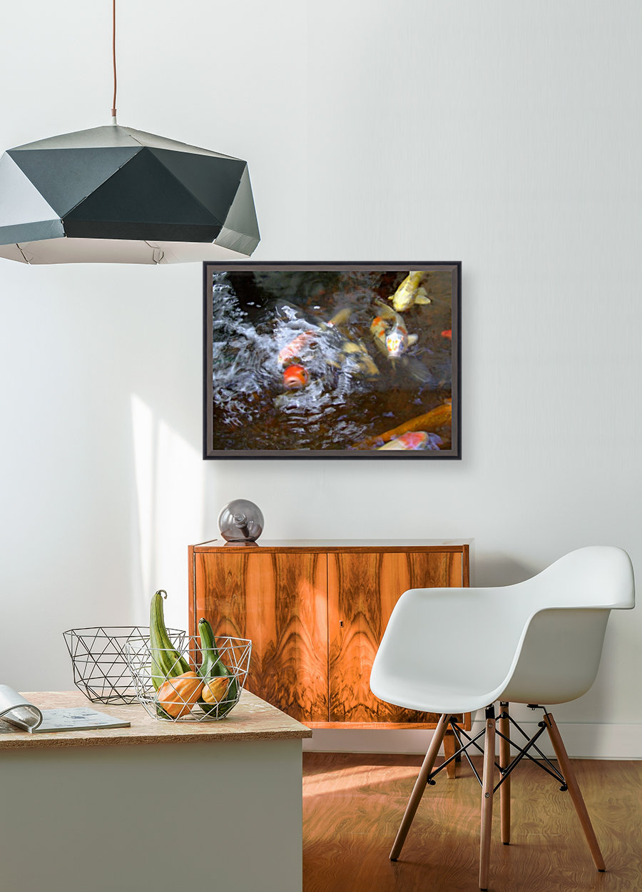 koi fish with Floating Frame