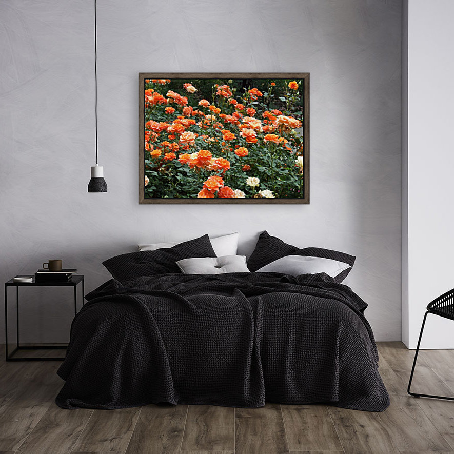 Orange Flowers Growing in Napa Califoria  with Floating Frame
