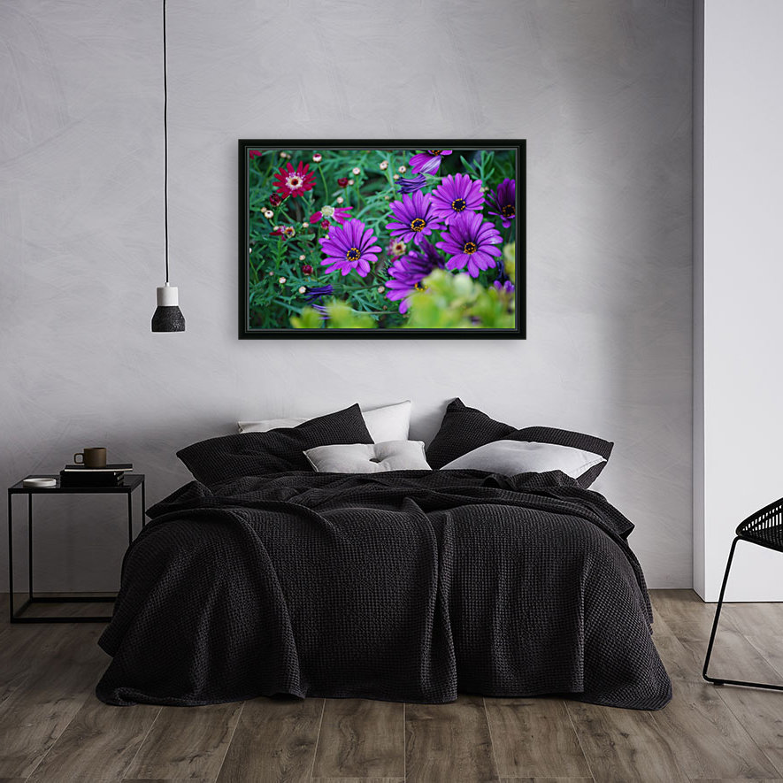 Purple Flowers in Dana Point CA with Floating Frame