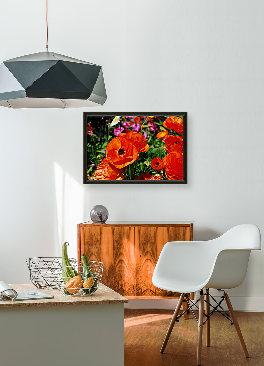 Garden with Orange Flowers Growing with Floating Frame