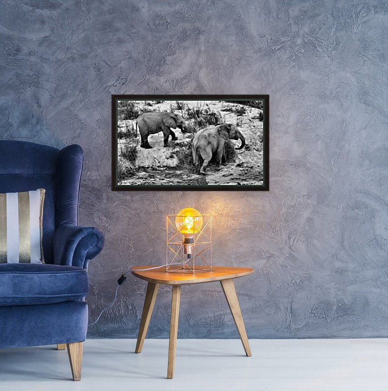 Elephant Youth  Art