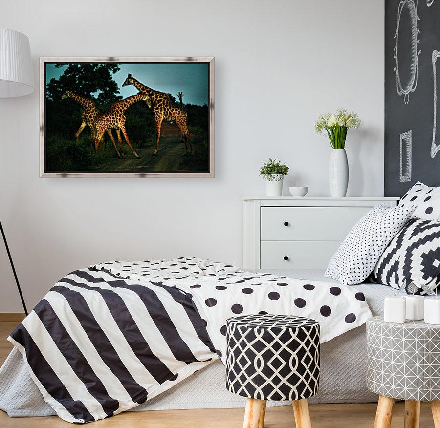 Giraffes South Africa  Art