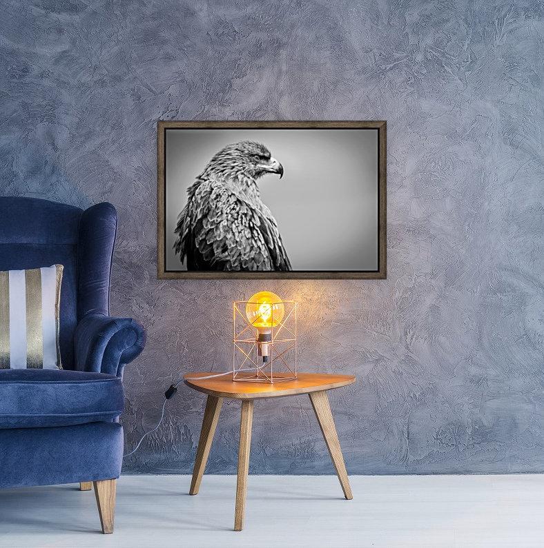 EAGLE EYE  Art