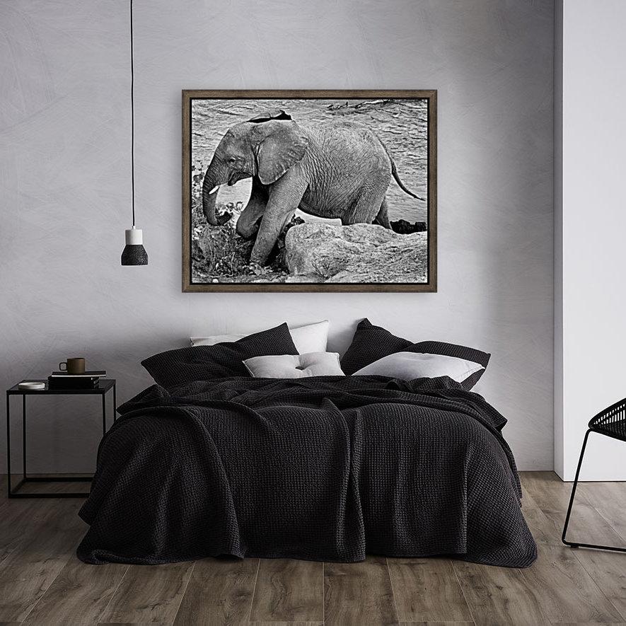 Elephant Baby  Art