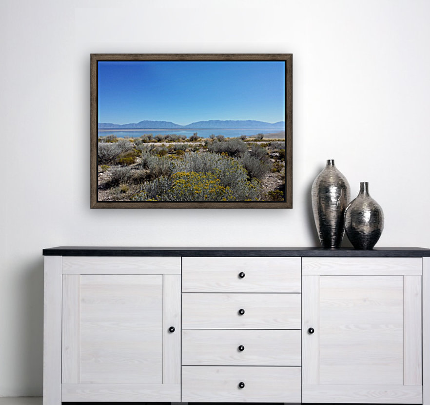 Salt Lake Vista  Art