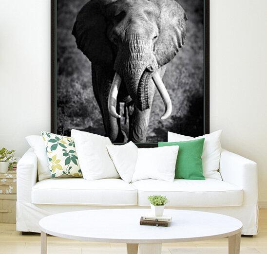 Elephant Bull  Art