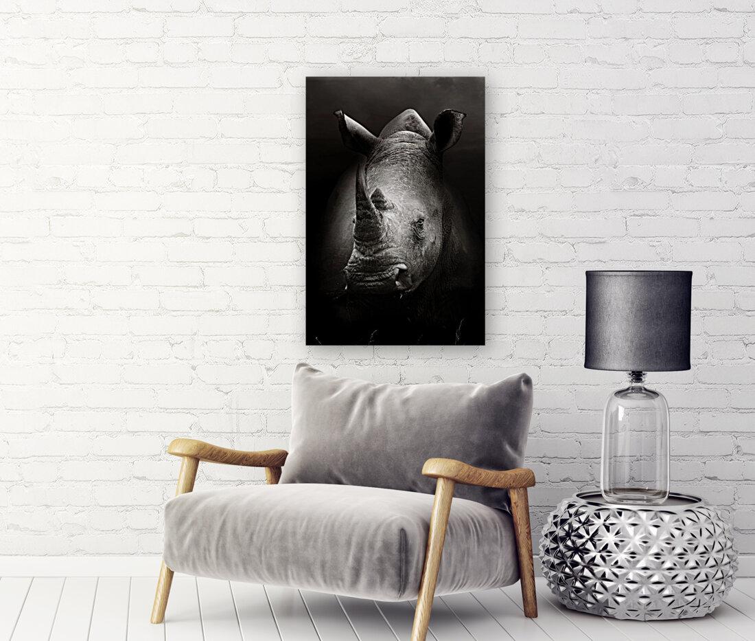 Rhinoceros portrait  Art