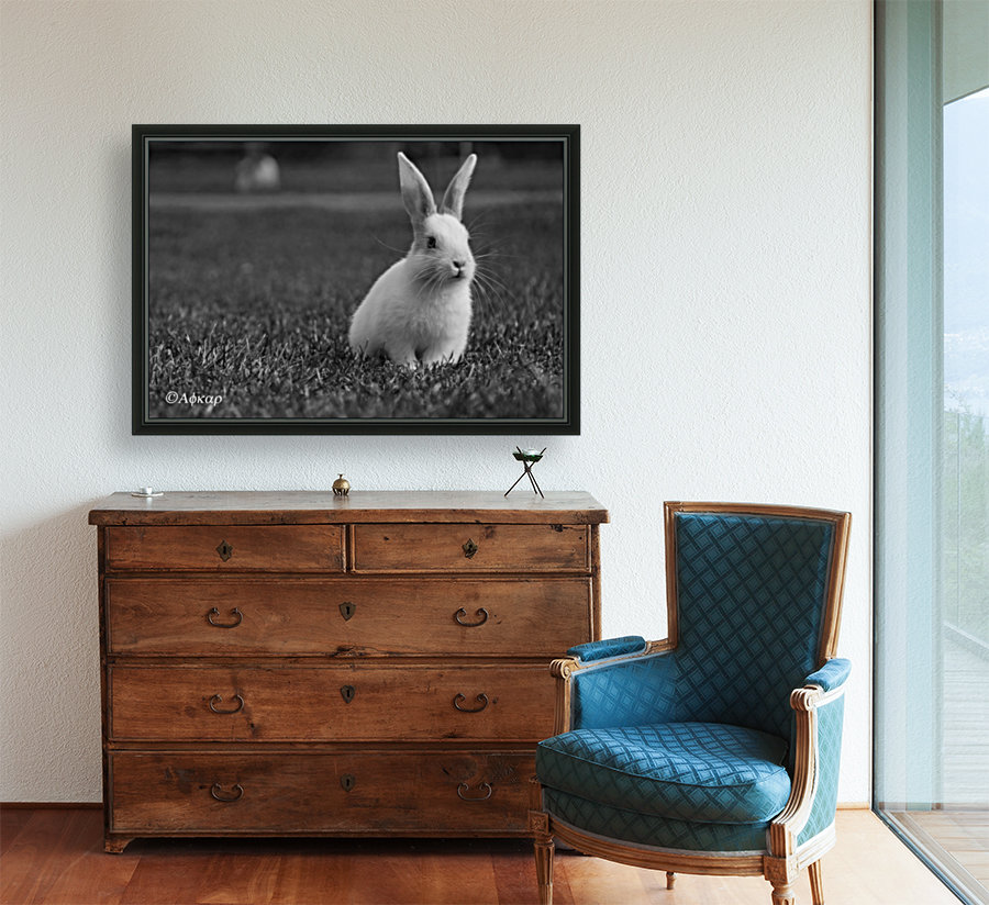 Lovely Rabbit  Art