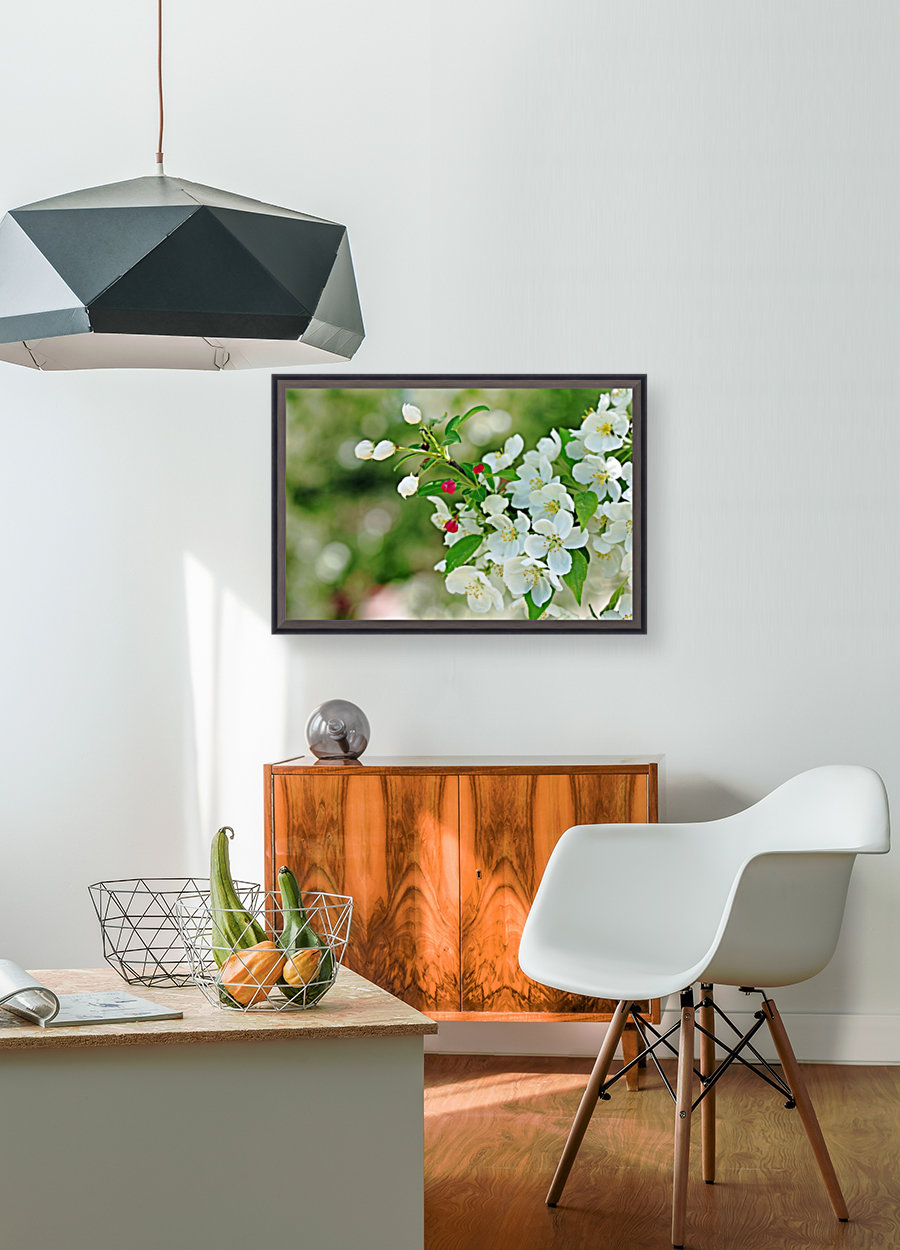 Crabapple Blossoms with Floating Frame