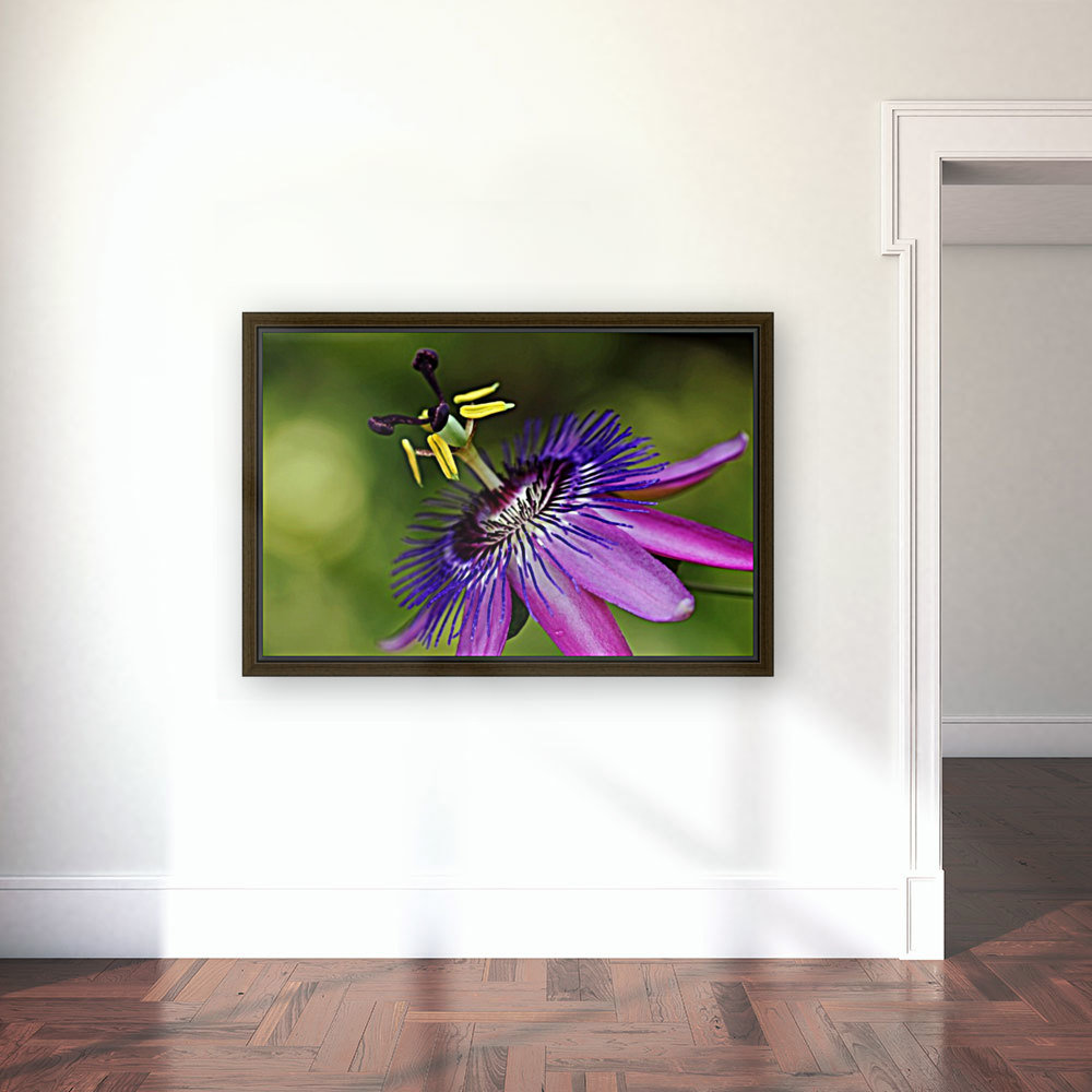 Purple Passion with Floating Frame