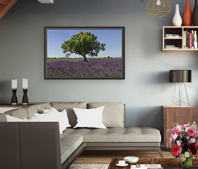 Tree in a lavender field  Art