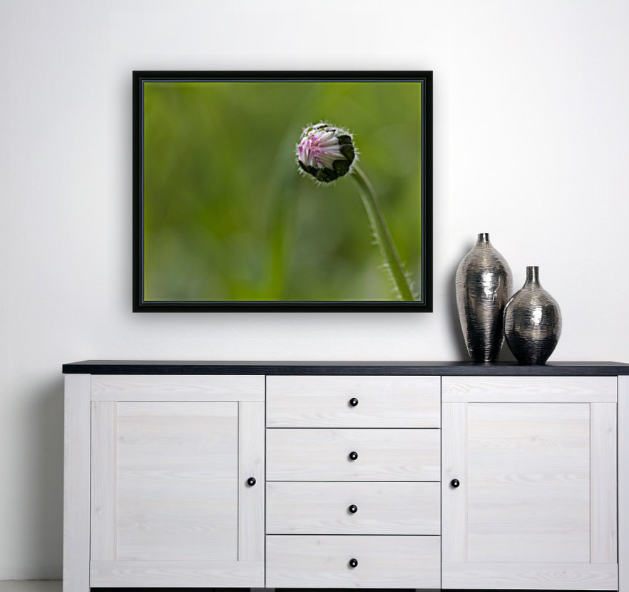 Flower bud with Floating Frame