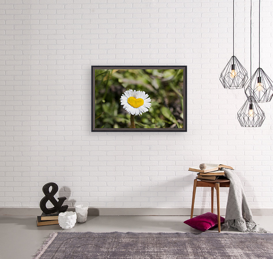 Heart shaped daisy with Floating Frame