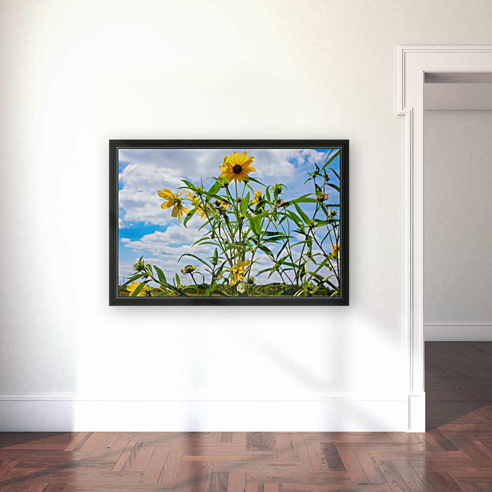 Sunny flower with Floating Frame