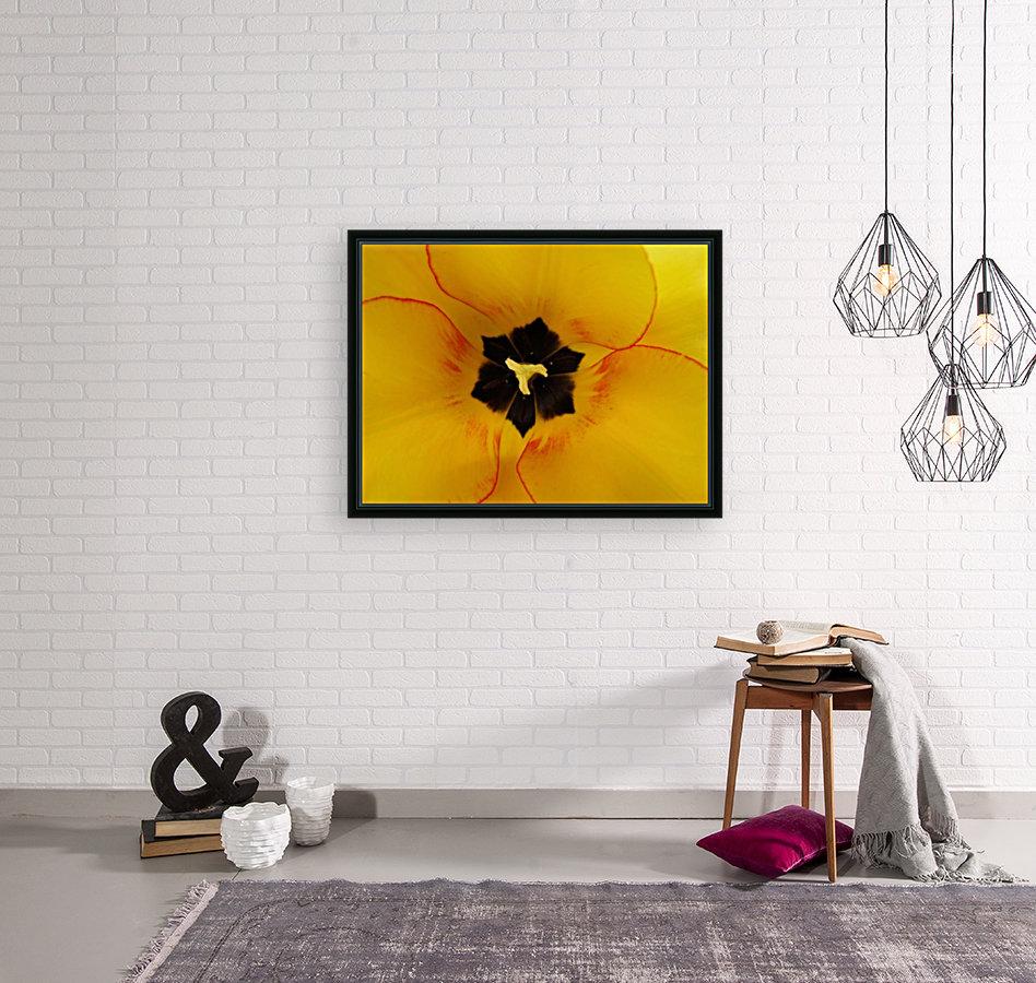 DSC00675  Art