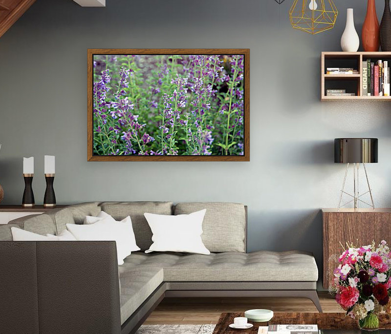 Wildflowers  Art