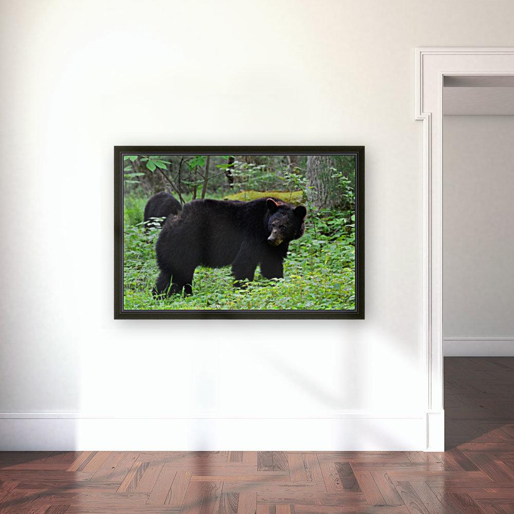 3299-Black Bear  Art