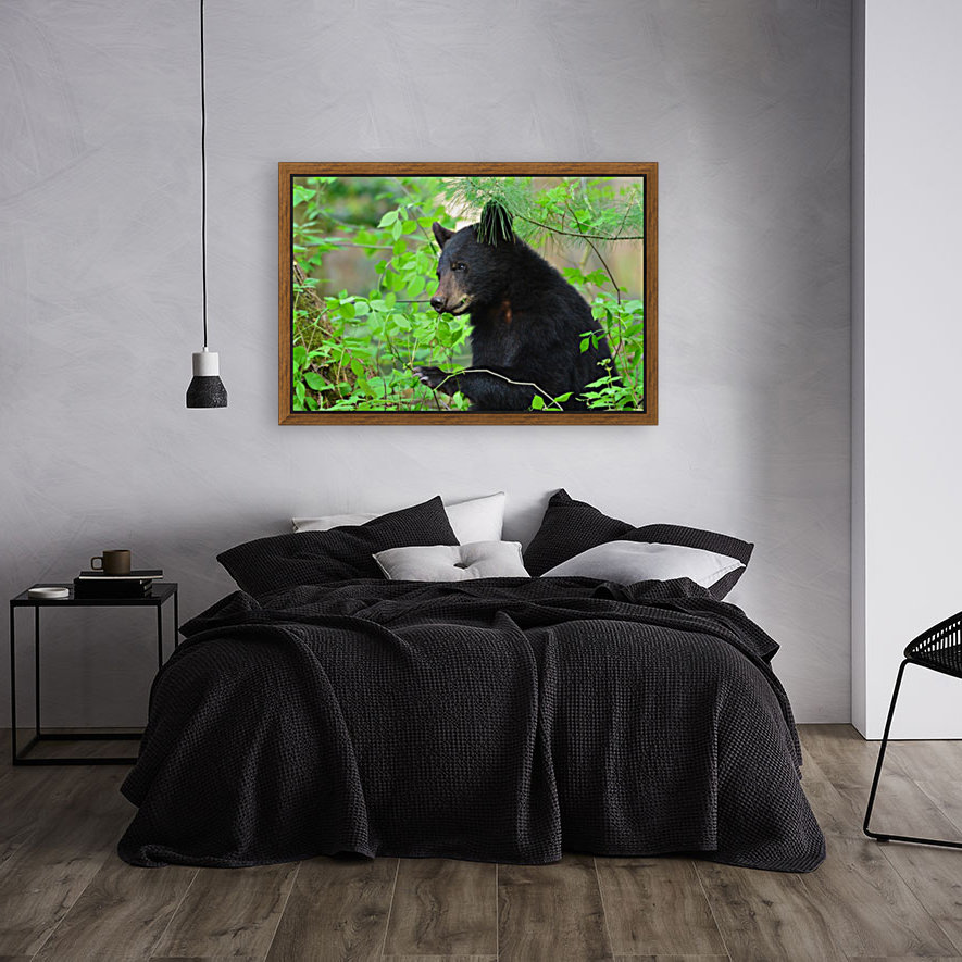 3646-Bear Lunch with Floating Frame