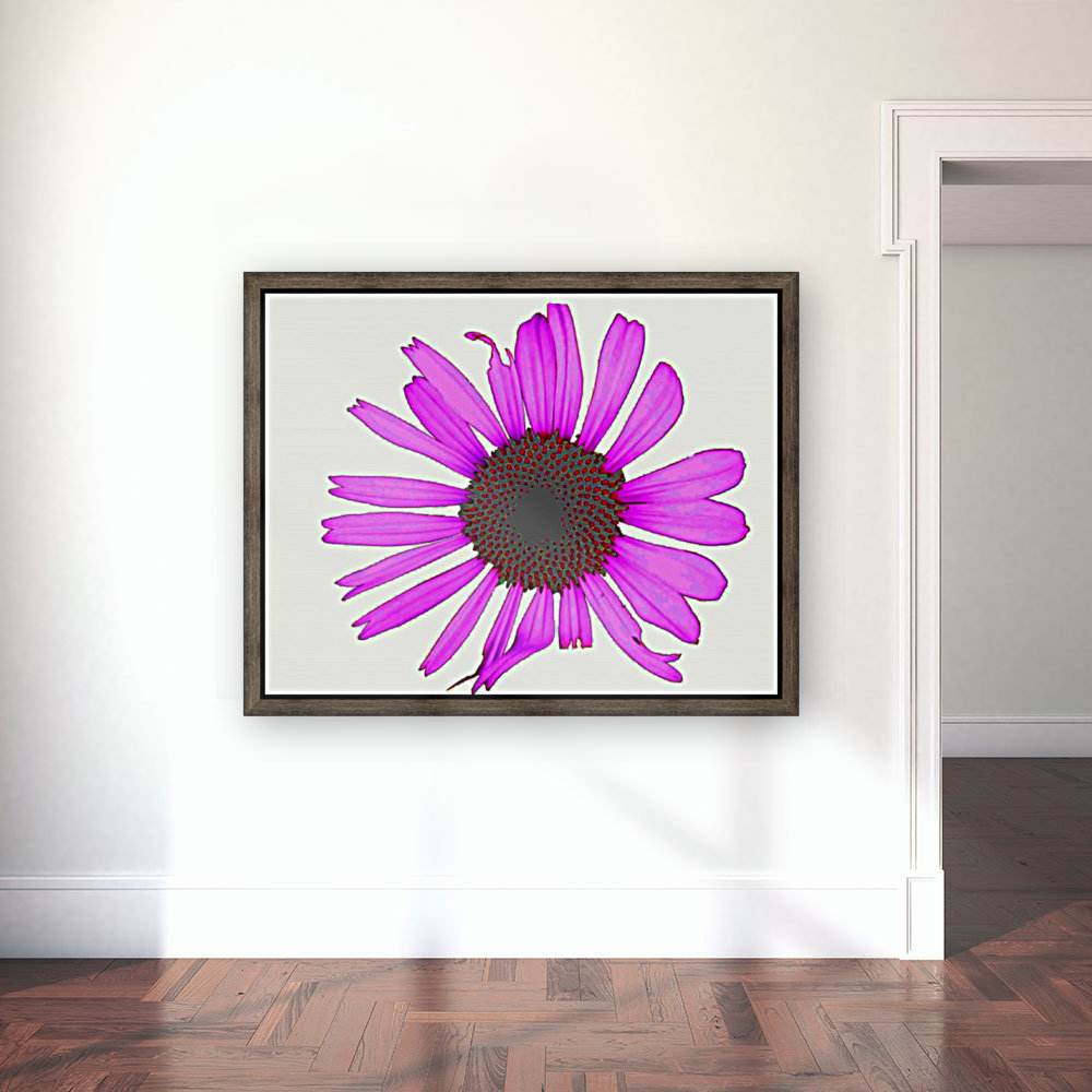 Daisy 3 with Floating Frame
