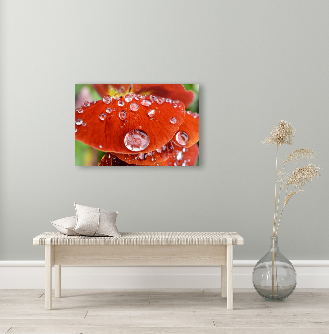 Raindrops On Orange Pansy Petal Photograph with Floating Frame