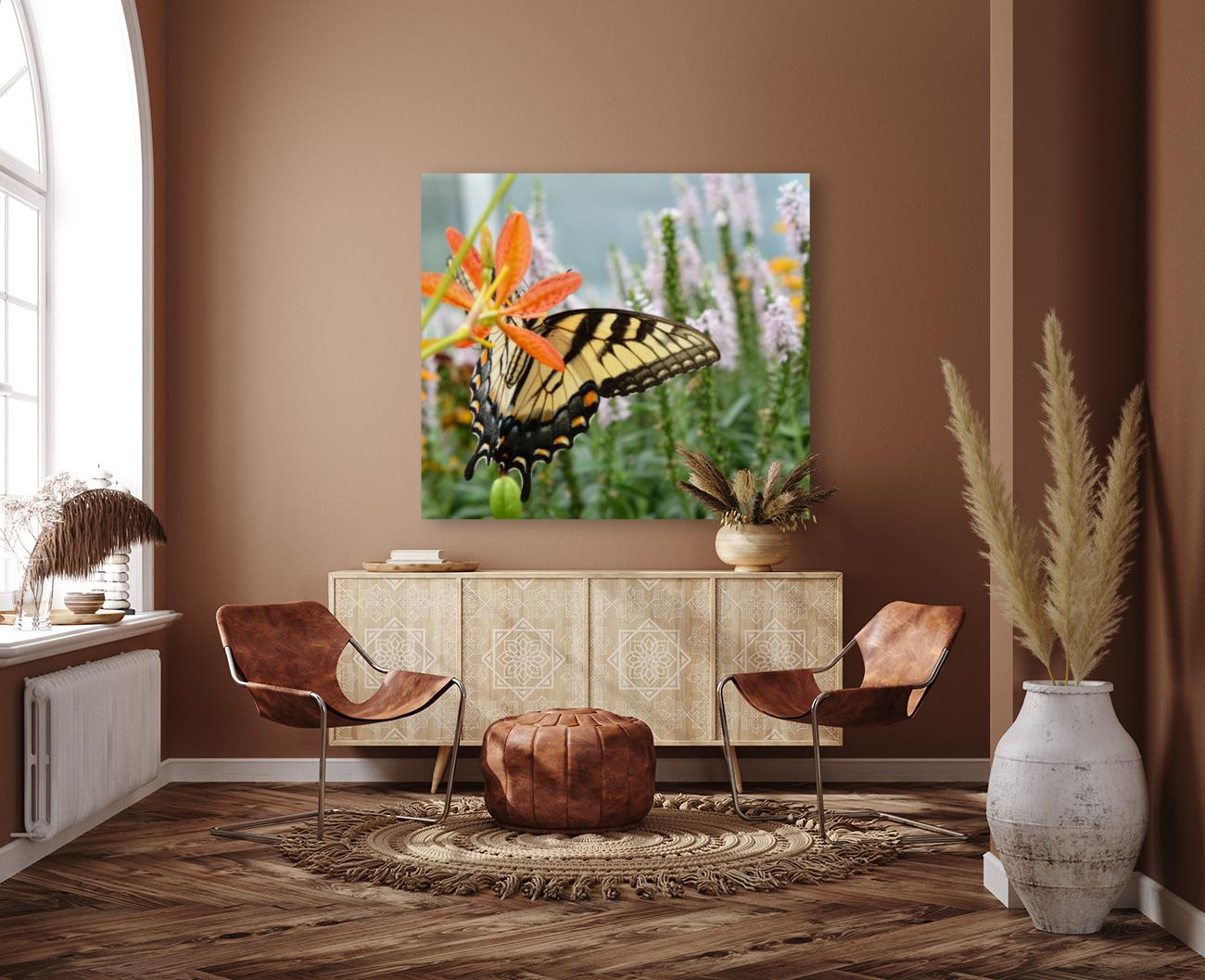 Butterfly On An Orange Flower Photograph  Art