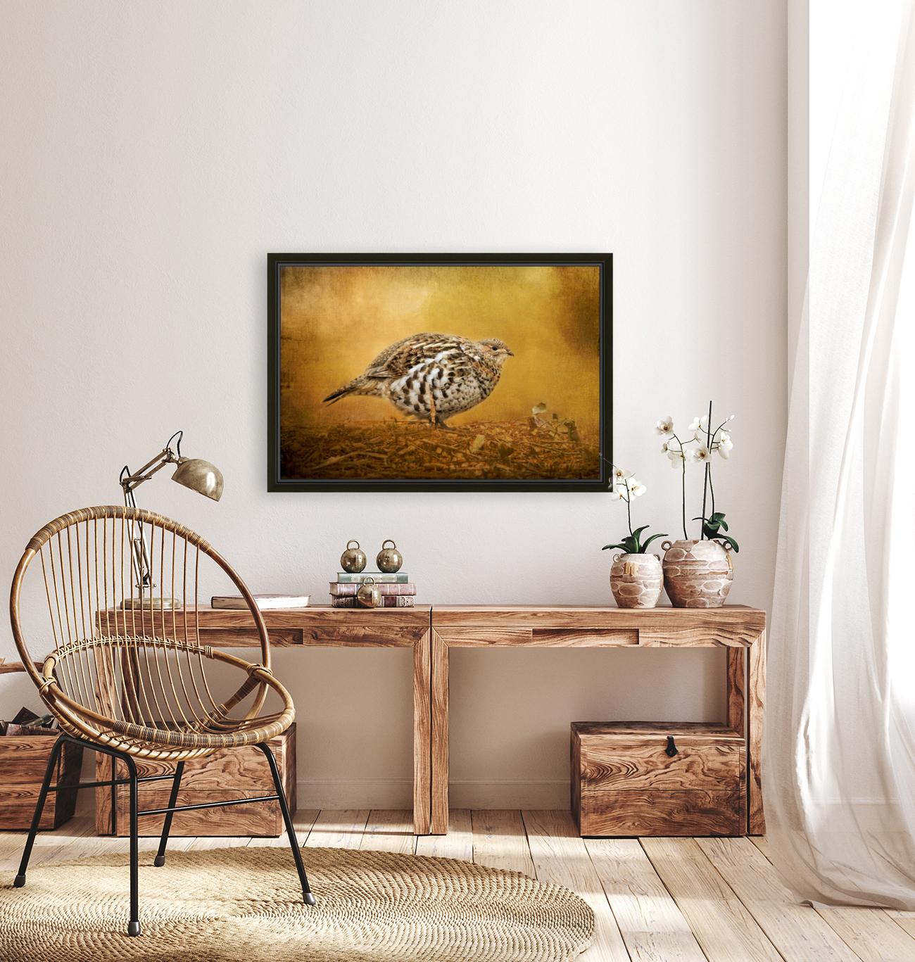 Female Ruffed Grouse  Art