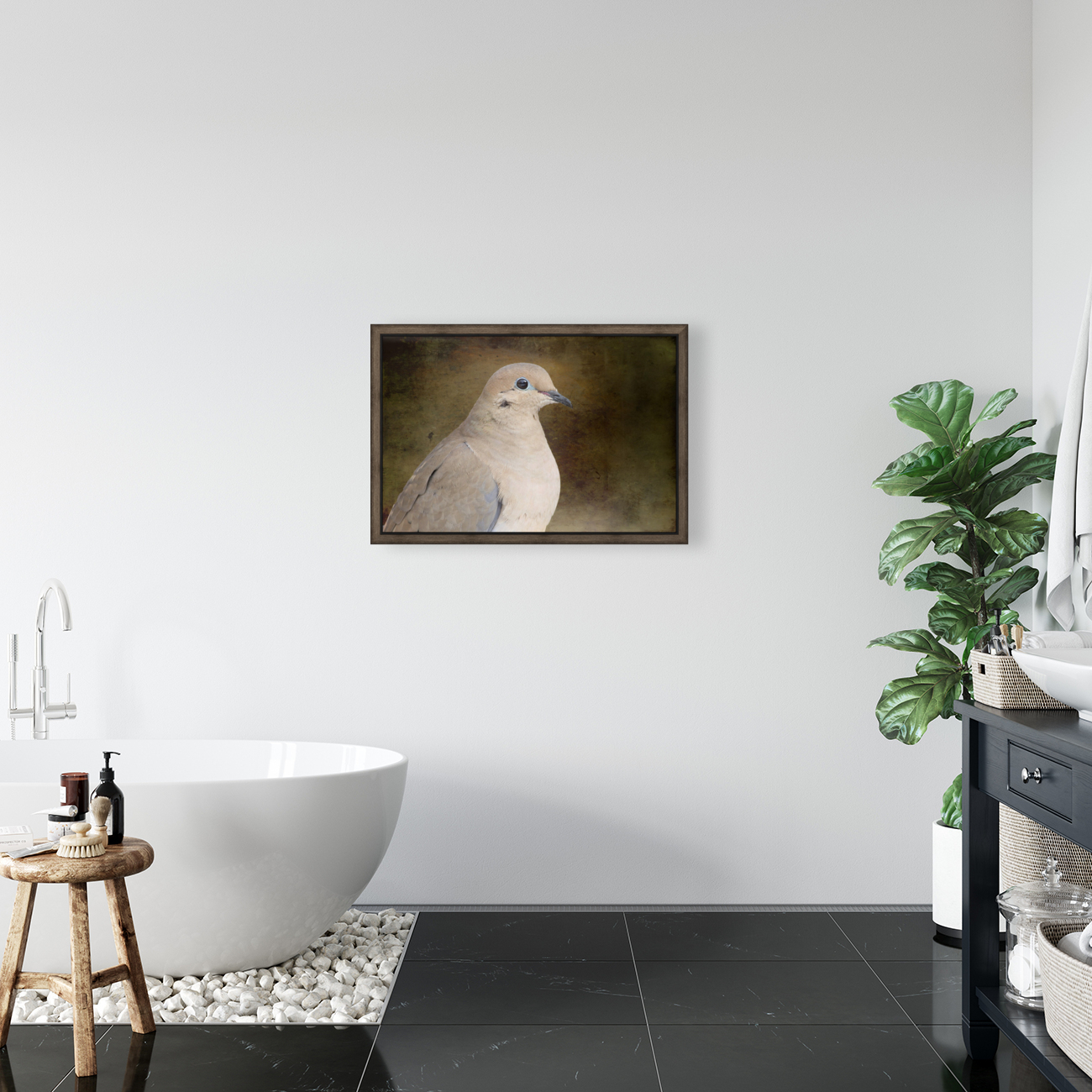 Mourning Dove with Floating Frame