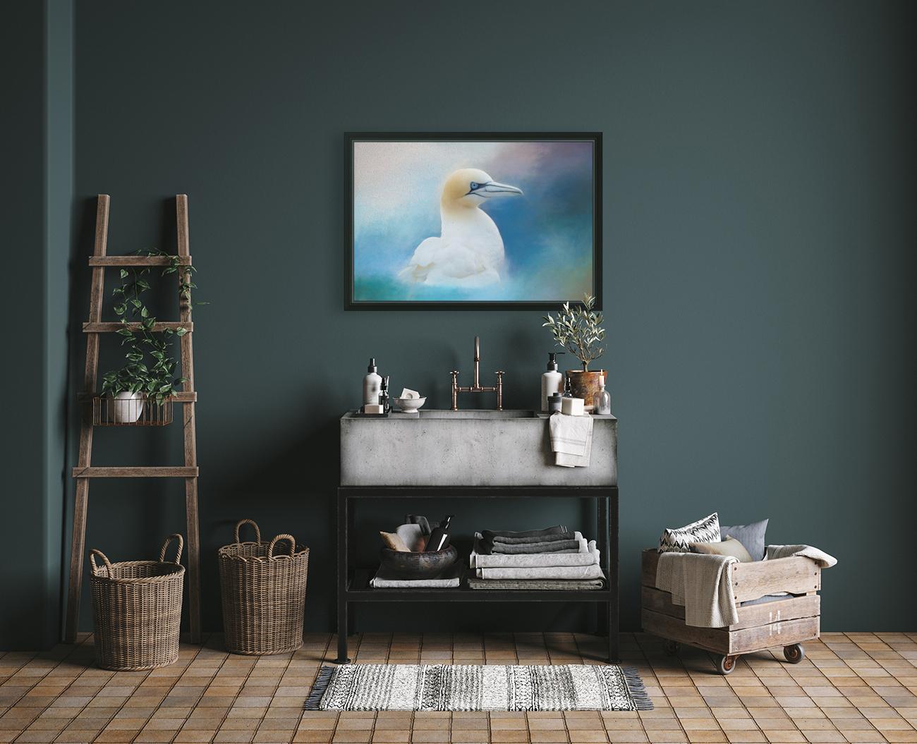 Northern Gannet ver2  Art
